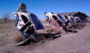 Bug Ranch inspired by the Cadillac Ranch.