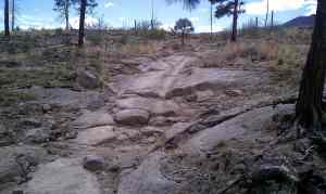 Well worn ruts in the trail.