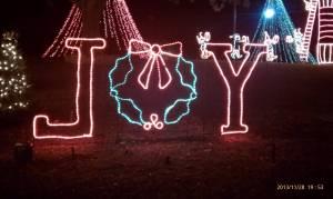 Joy at the Marble Falls Walkway of Lights.