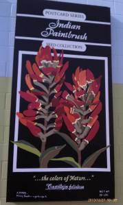 The fourth wildflowers panel features Indian Paintbrush.