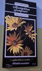 The sixth wildflowers mural features Maximillian Sunflowers.